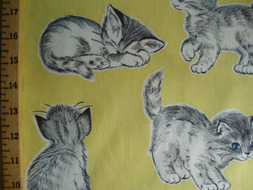 Kittens on Yellow